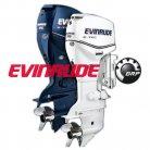 evinrude_001