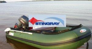 stingray_001
