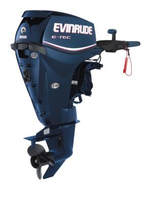 Evinrude E25DTL