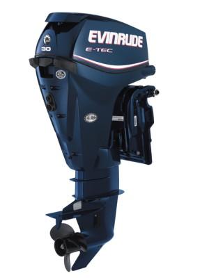 Evinrude E30DTL